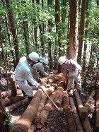 簡易な修羅(しゅら)を造って木材を搬出